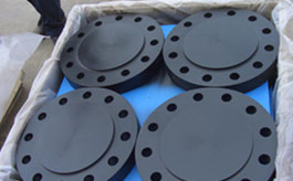 LTCS A350 LF2 Blind Flanges